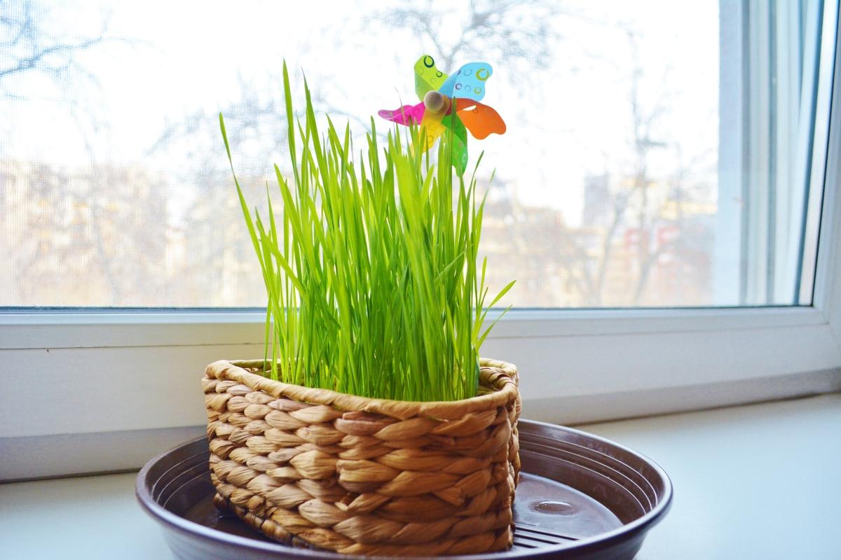 Jarná dekorácia rýchlo a jednoducho